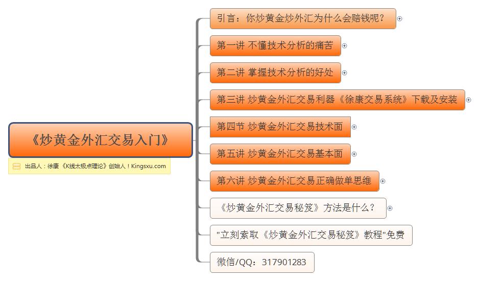 徐康:《炒黄金外汇交易入门》 正式出版